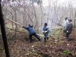雑木林除去 (7)